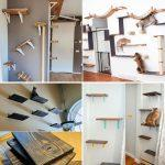 16 easy DIY Cat Shelves and cat wall ideas