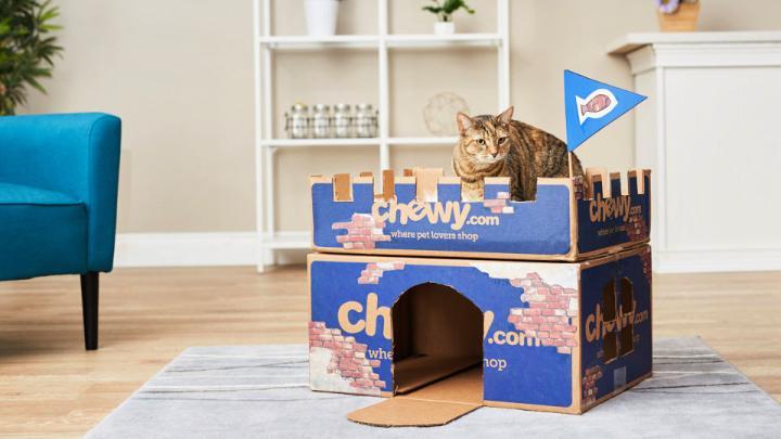Chewy Box Cat Castle 1