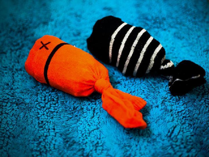 DIY Sock Fish Cat Toy