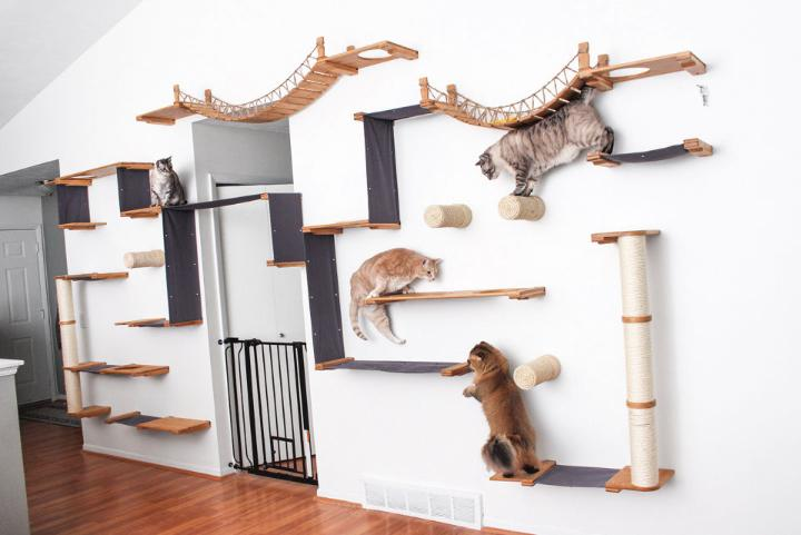 How to Design Your Cat Wall