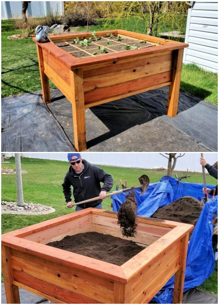 Raised Garden Bed for Square Foot Gardening