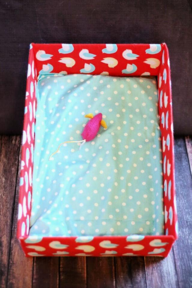 Stylish Cardboard Box Cat Bed