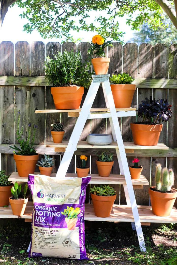 Tiered Plant Stand from Old Ladder Garden