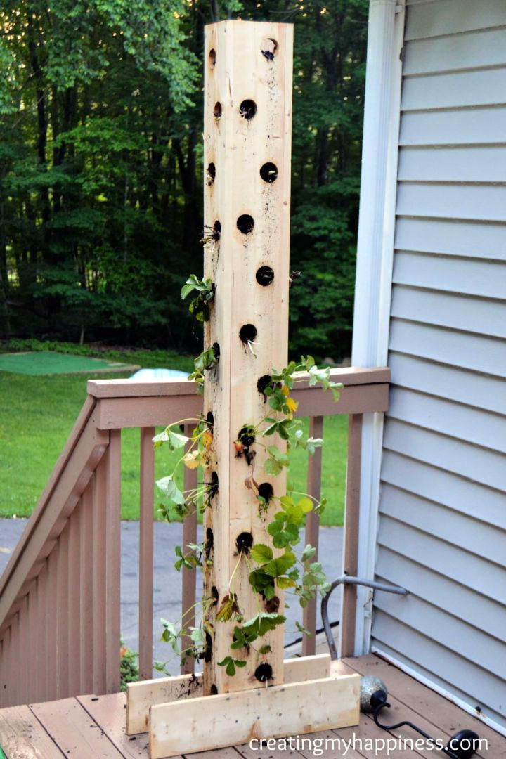 Building A Strawberry Tower