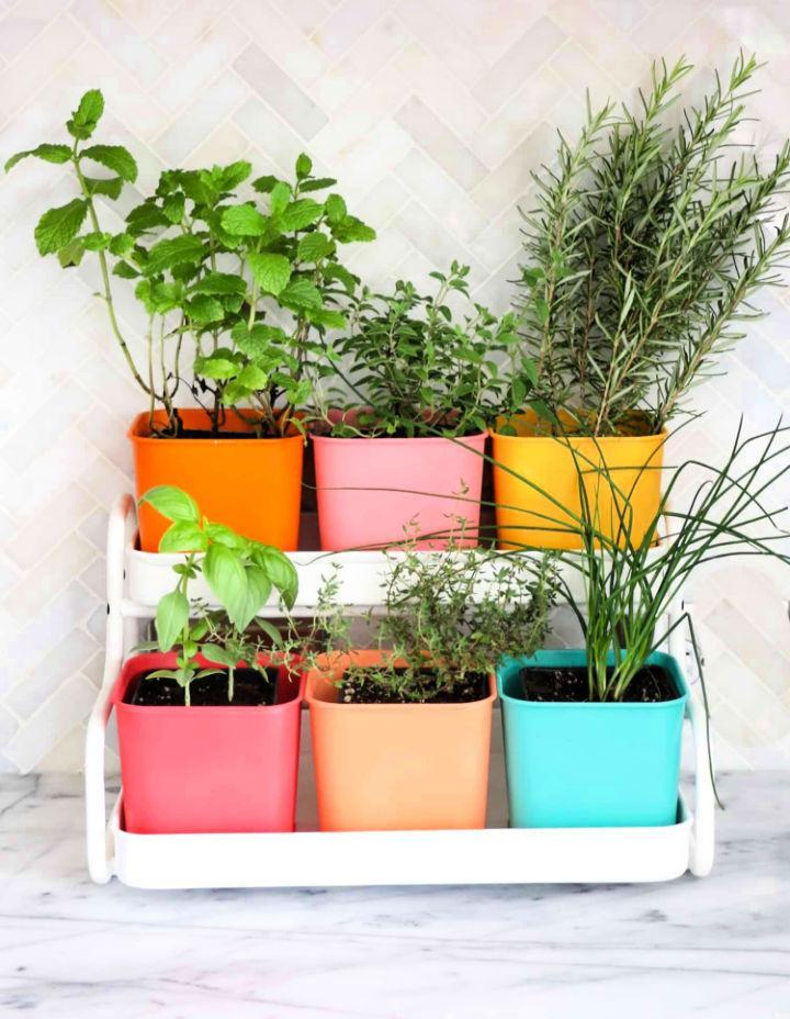 Colorful Indoor Herb Garden