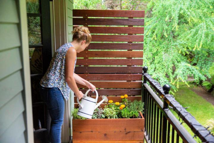 DIY Cocktail Herb Garden