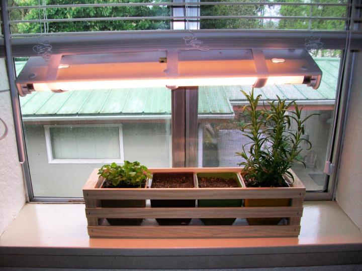 Indoor Herb Garden with Adjustable Grow Light