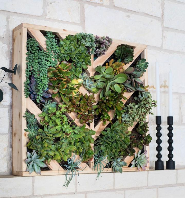 Indoor Vertical Succulent Garden