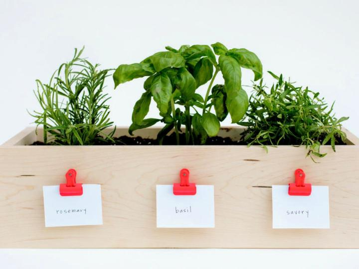 Kitchen Planter Box for Herbs