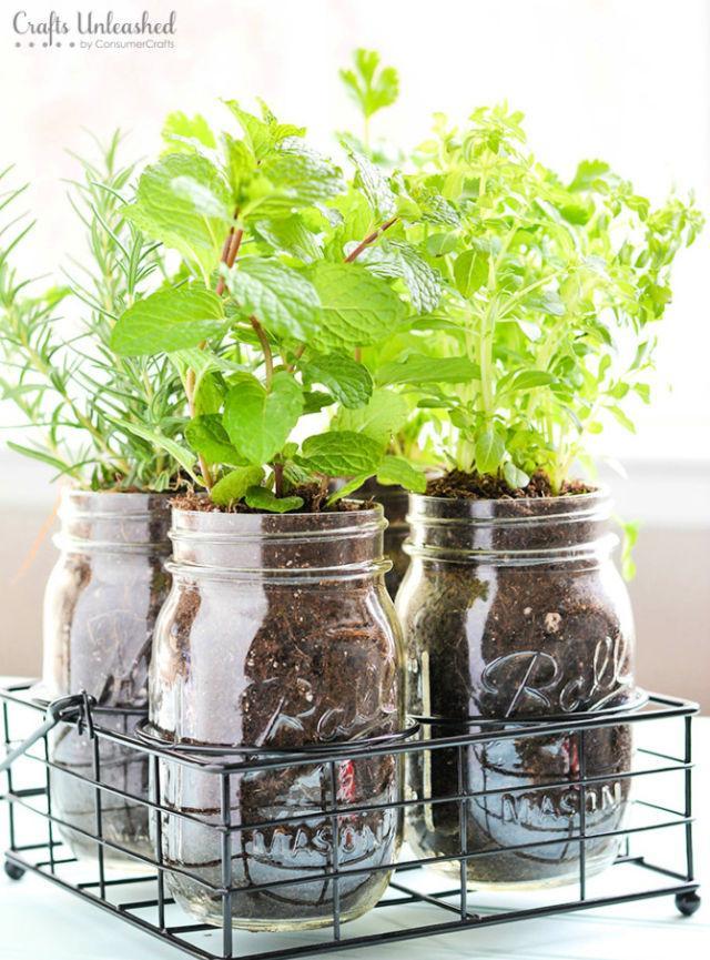 Make a Mason Jar Herb Garden