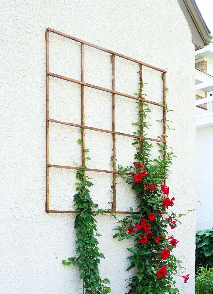Modern Grid Trellis from Garden Stakes