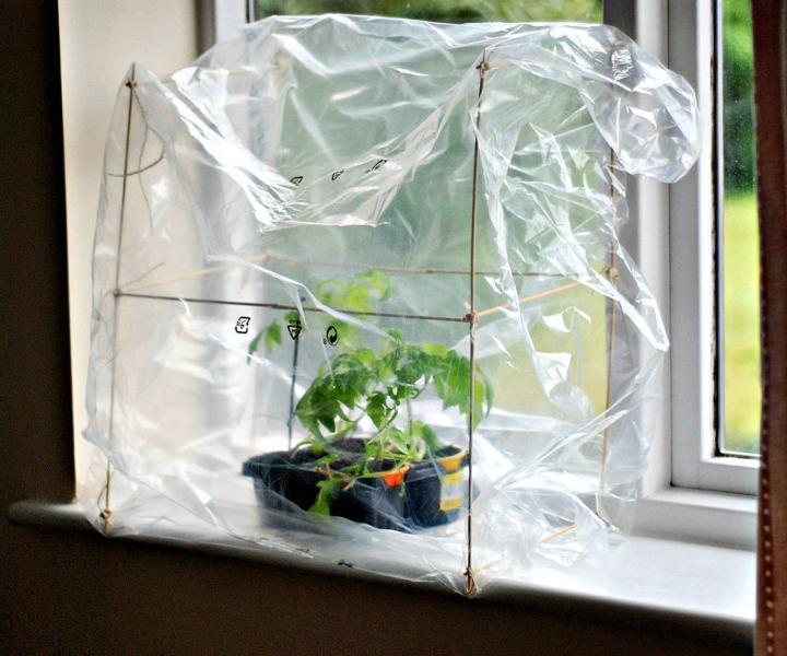 No Budget Indoor Greenhouse