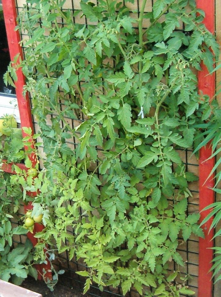 Space saving Vertical Garden