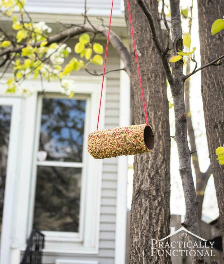 Toilet Paper Roll Into a Bird Feeder