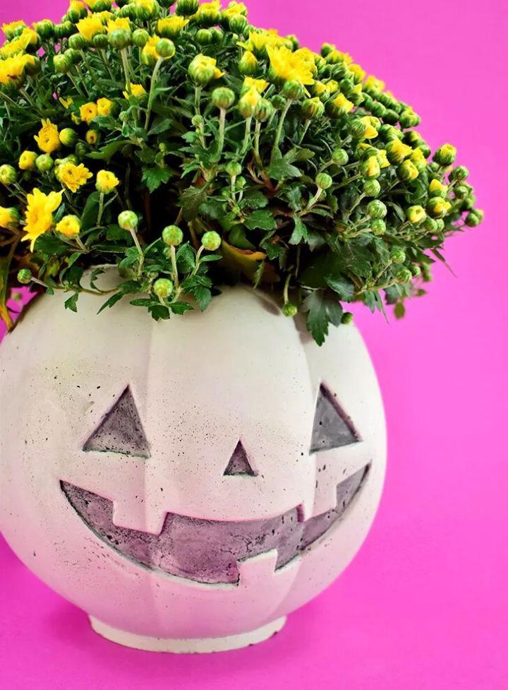 Amazing Cement Pumpkin Planter