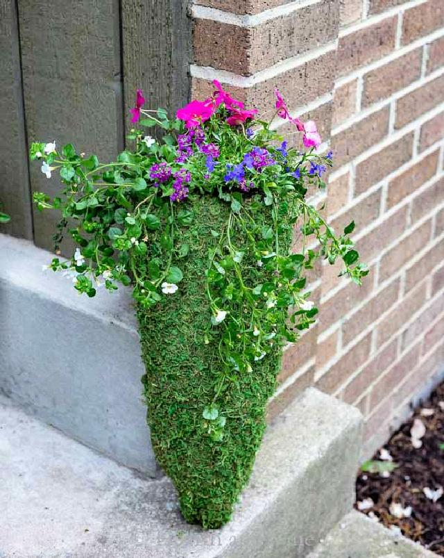 Hanging Planter with Chicken Wire and Moss