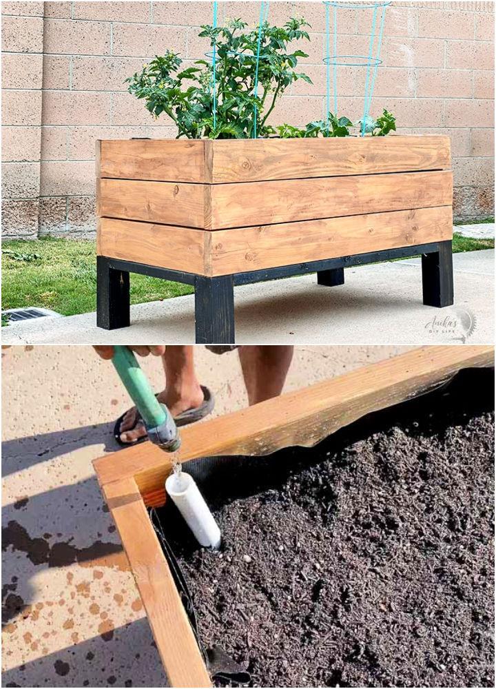 Build a Self Watering Planter Box