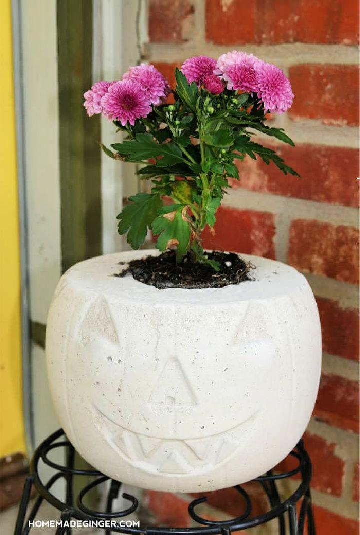 Concrete Pumpkin Planter