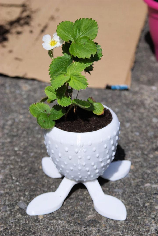 DIY Tasty Strawberry Planter