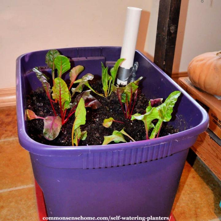 Make Your Own Self Watering Planters