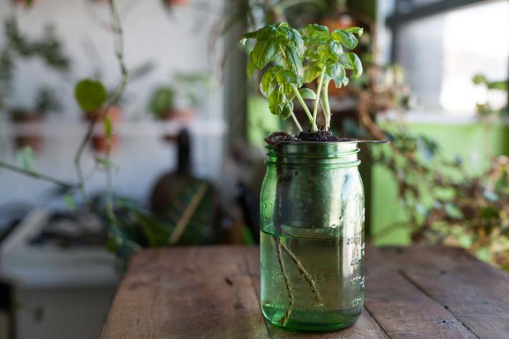 Self Watering Mason Jar Planter