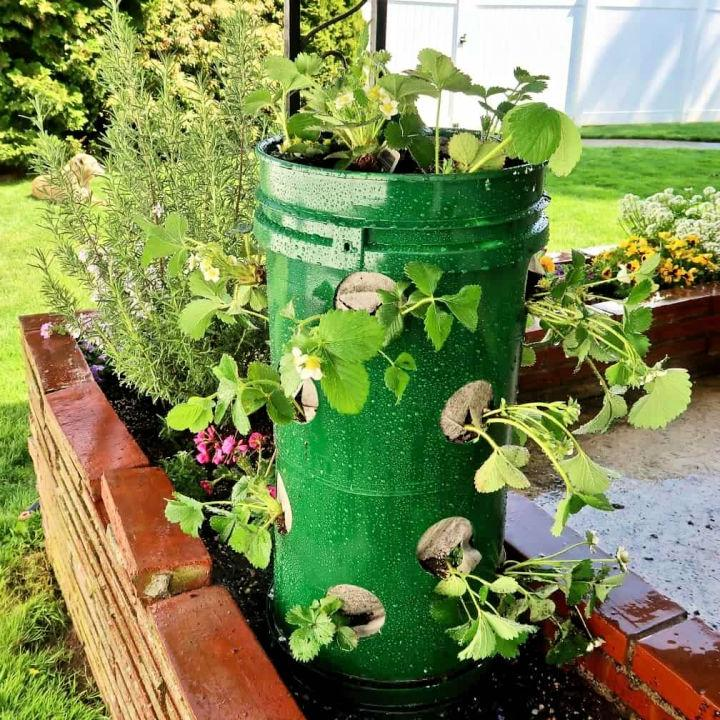 Strawberry Towers Planted Tutorial