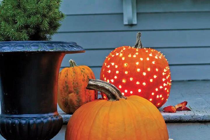 Beautiful Pumpkin Luminaries