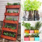 Best DIY Herb Garden Ideas