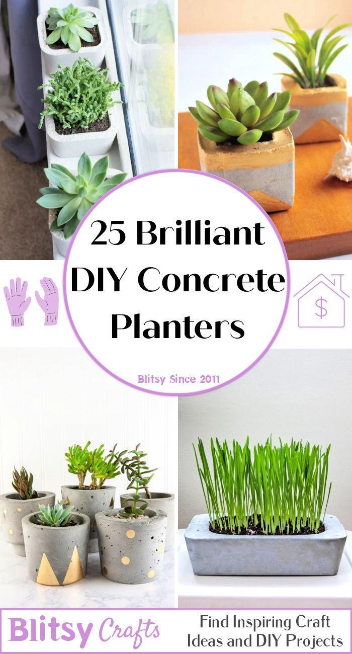 Brilliant DIY Concrete Planters To Make