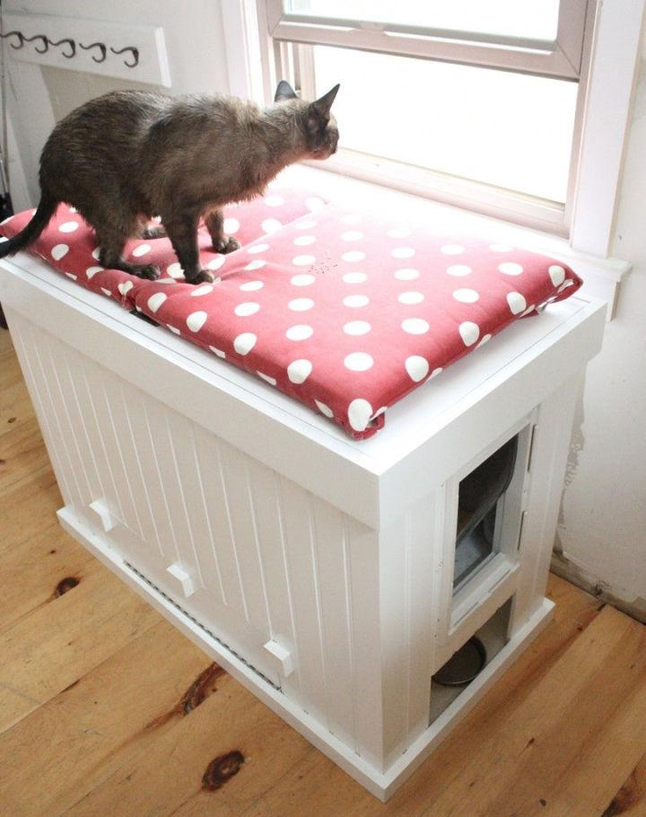 Cat Litter Box That Doubles as a Bench