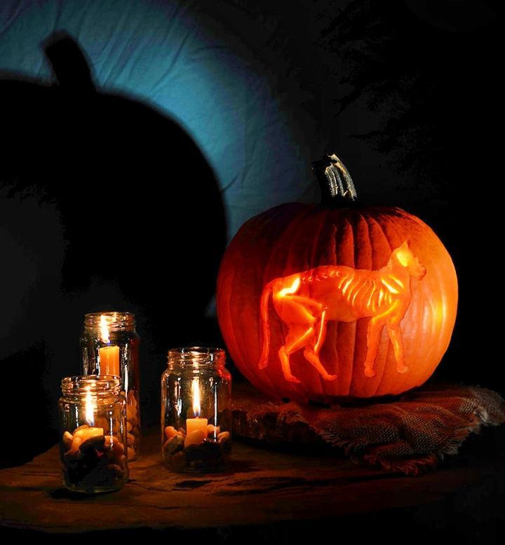 Cat Skeleton Jack o lantern