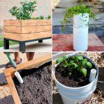 Cheap DIY Self Watering Planters To Make and Save Your Gardening Time