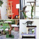 Free DIY Cat Tree Plans