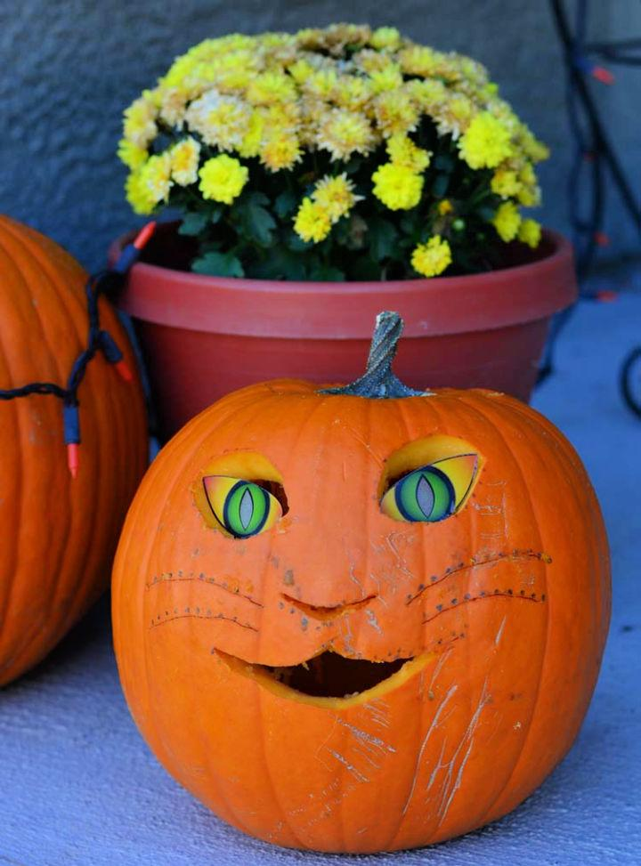 Kitty Carved Pumpkin for Kids