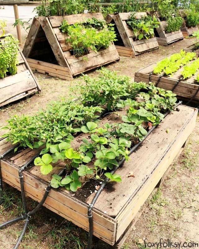 Pallet Gardening On The Ground
