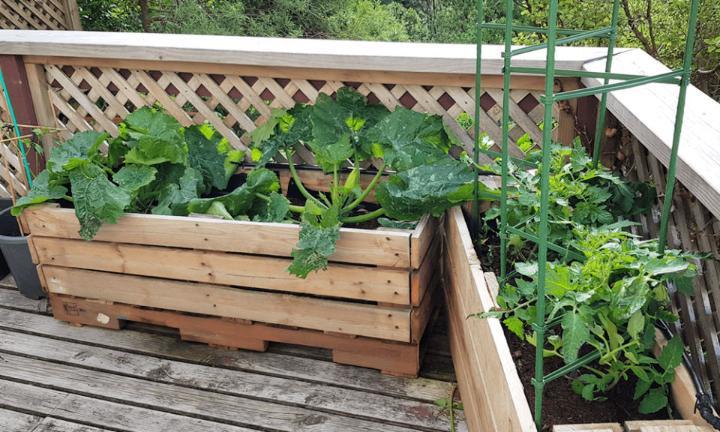 Pallet Planter Box Plan