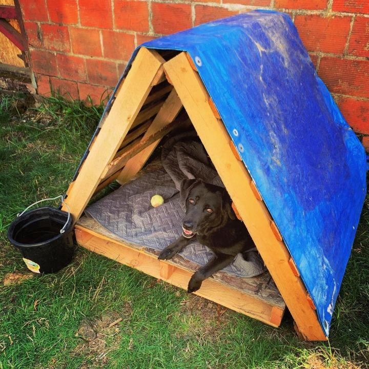 Reused Old Pallets Dog House