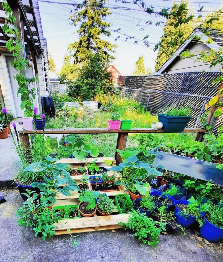 Reusing Wooden Pallet Garden