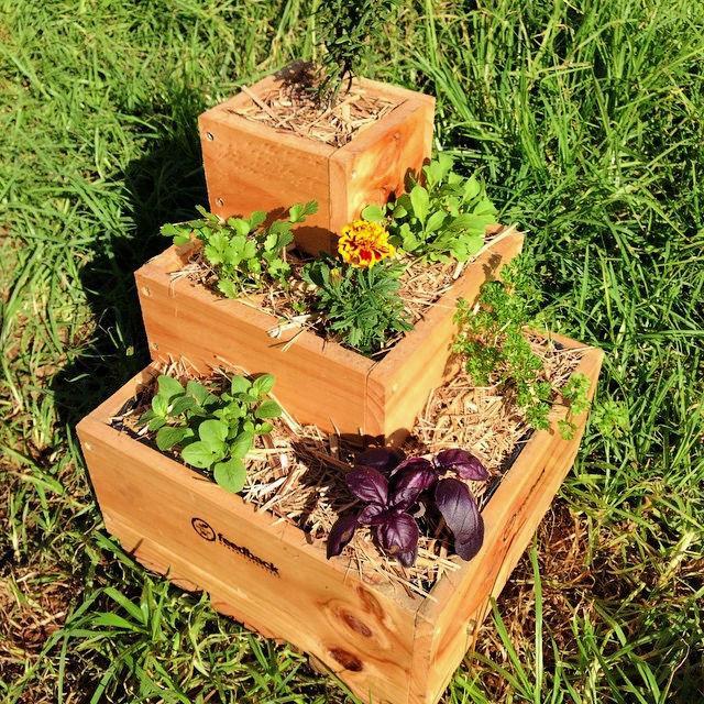 Self Watering Pallet Planter Box