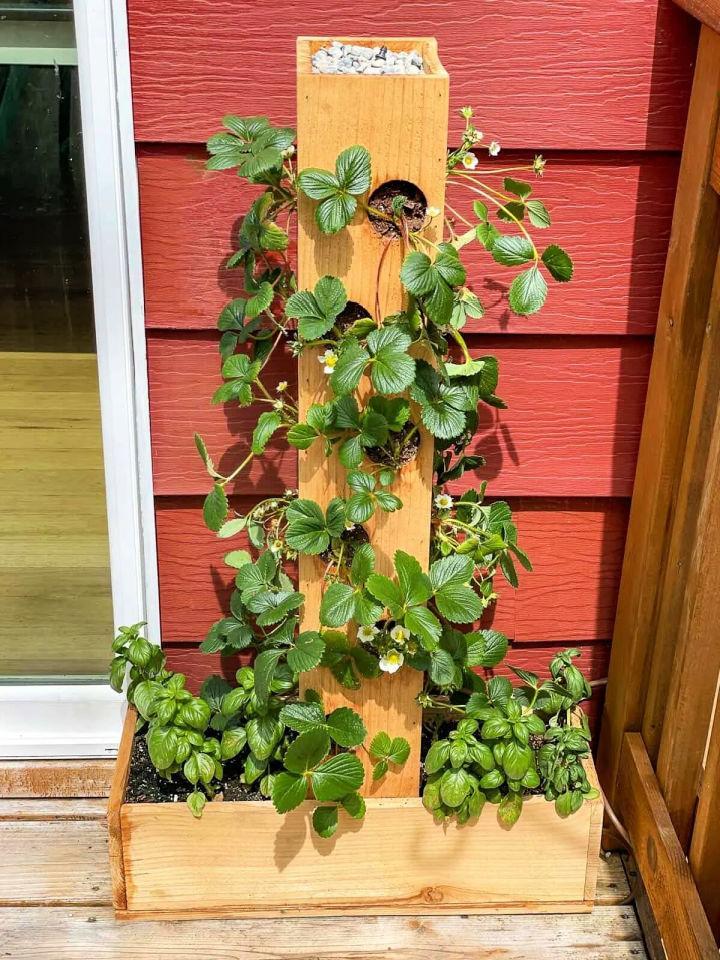 Strawberry Planter Plan