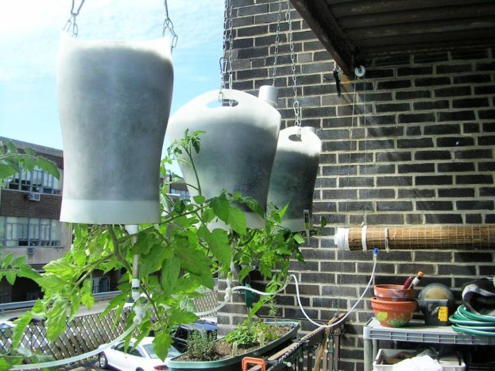 Upside Down Hanging Self Watering Planters