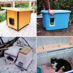 free DIY Outdoor Cat House Plans